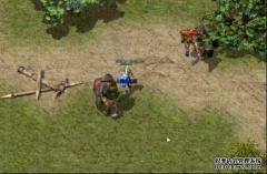 独特韩版游戏里战士占绝对优势